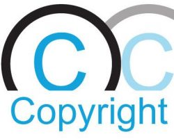 Copyright Info Point