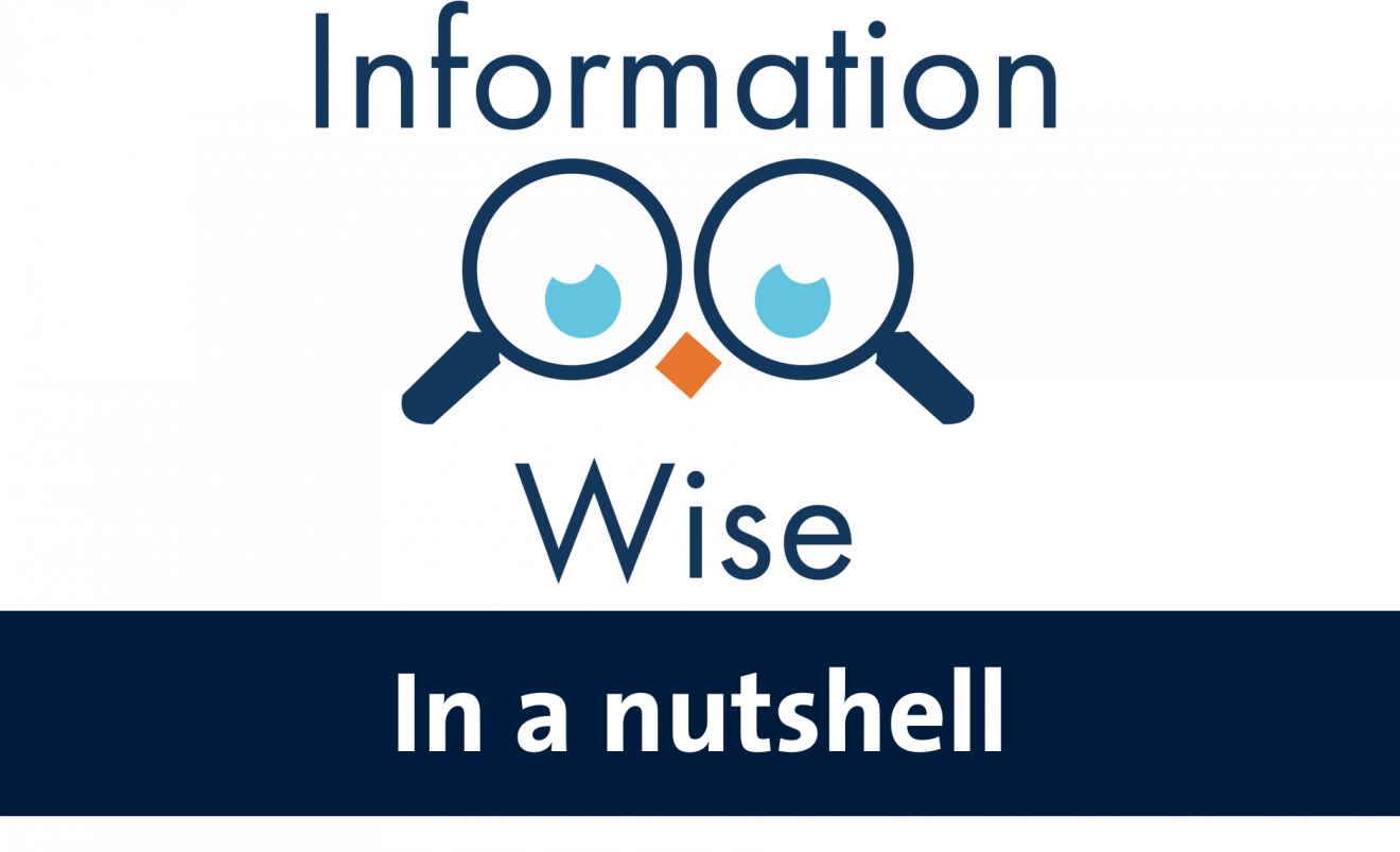 Information-Wise in a Nutshell