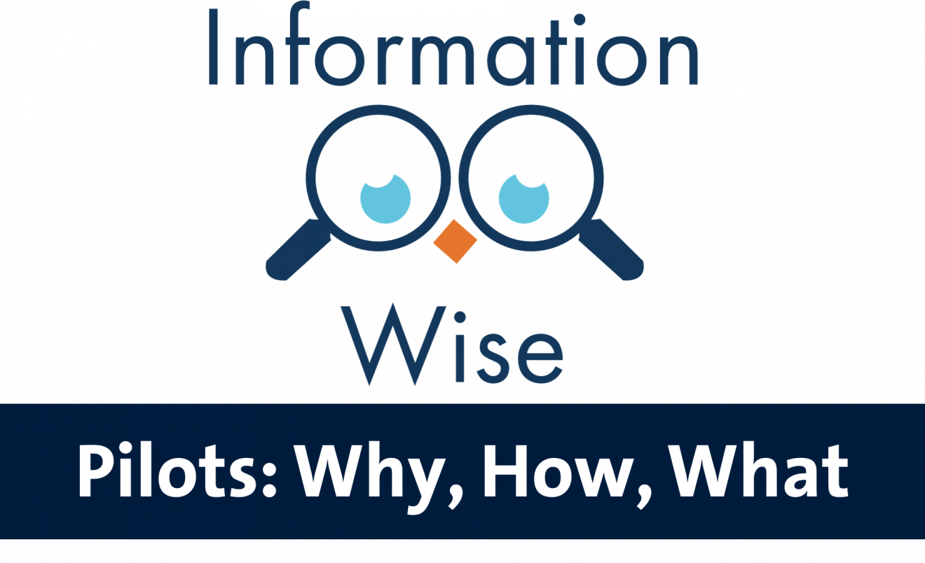 Information-Wise Pilots: Why, How, What