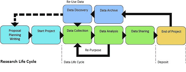 RDM-research-life-cycle