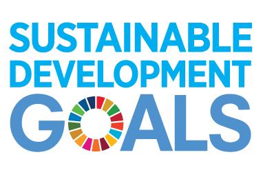 SDG's image