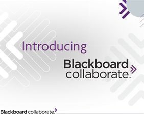 Blackboard Collaborate for distance education