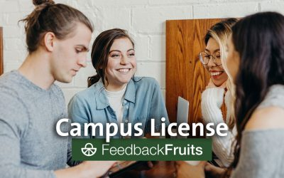 FeedbackFruits for interaction and peer feedback