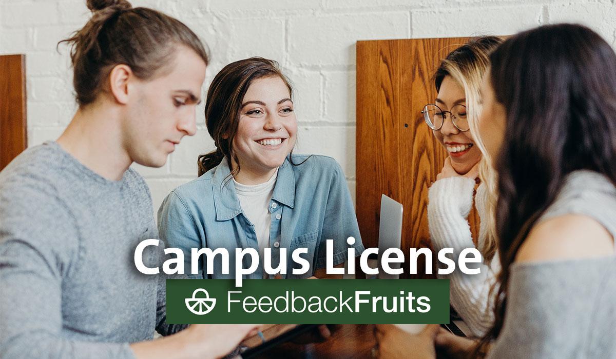 FeedbackFruits for interaction and peer feedback