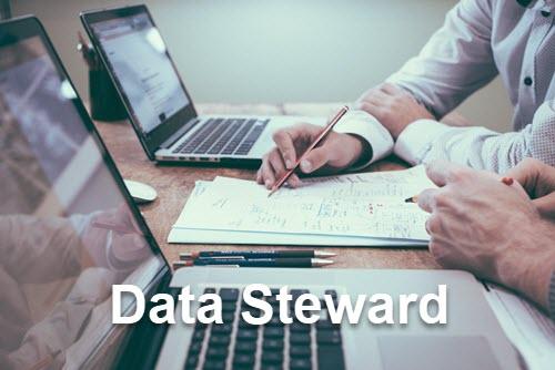 Data stewardship services