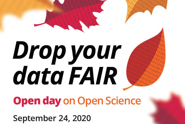 drop your data fair