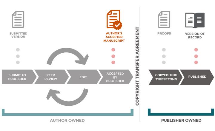 manuscript-versions-infographic